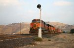 BNSF 1023